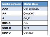 turkiyenin-en-degerli-100-markası-derecelendirme-puani