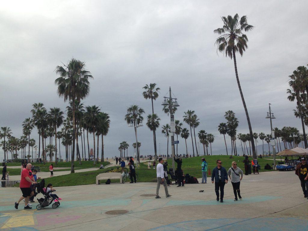 venice-plajı